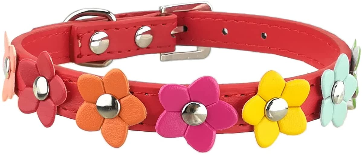 Newtensina Stylish Dog Collar Cute Dog Collar Girl Flower Puppy Collars for Small Dogs with Flower