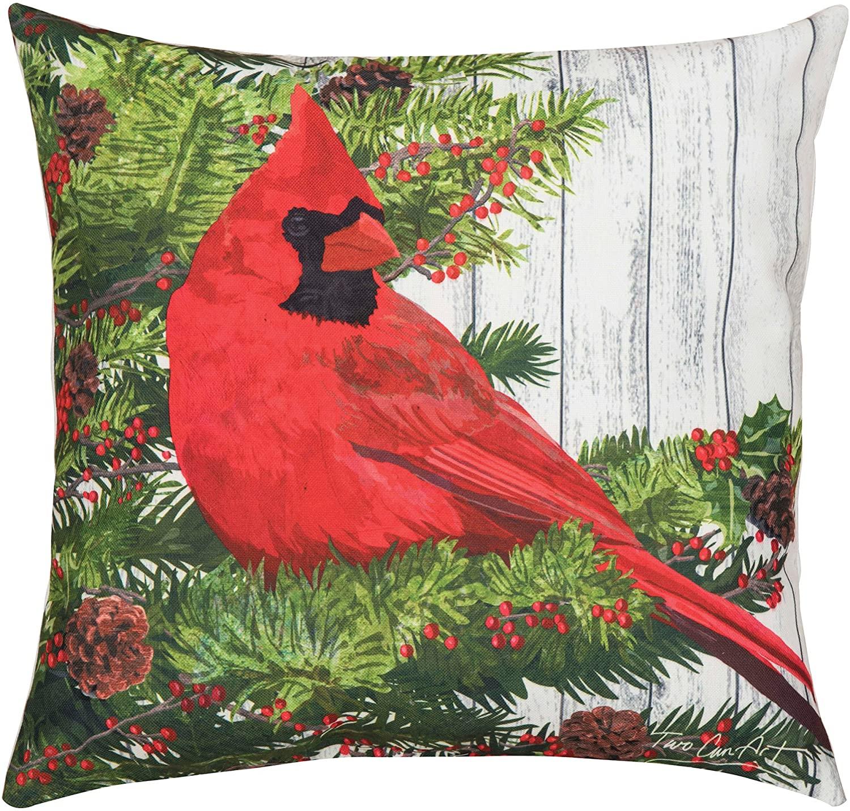 C&F Home Christmas Cardinal Bird Christmas Holiday Xmas Winter Lodge Cabin HD Indoor/Outdoor Decorative Throw Pillow 18 x 18 Red Cardinal Christmas Bird