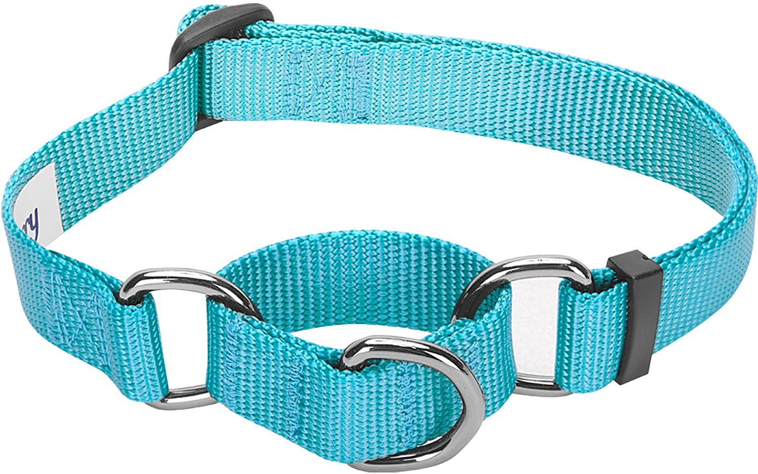 Blueberry Pet Essentials 30+ Colors Classic Solid Color Collection - Personalized Collar Tags, Regular & Martingale Collars