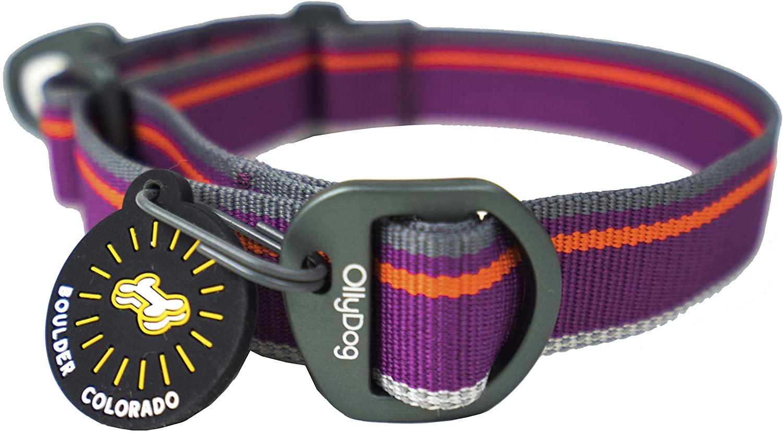 OllyDog Martingale Mesa Reflective Adjustable Dog Collar