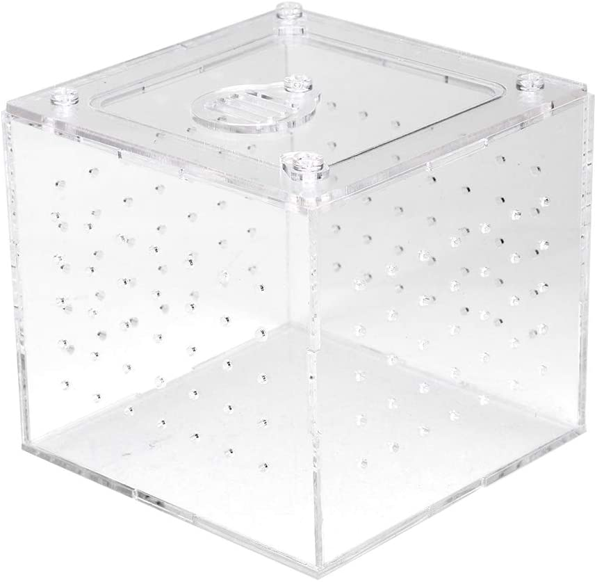 Rehomy Reptile Feeder Case, Acrylic Terrarium Insects House Box for Snakes Spider Lizard Breeding