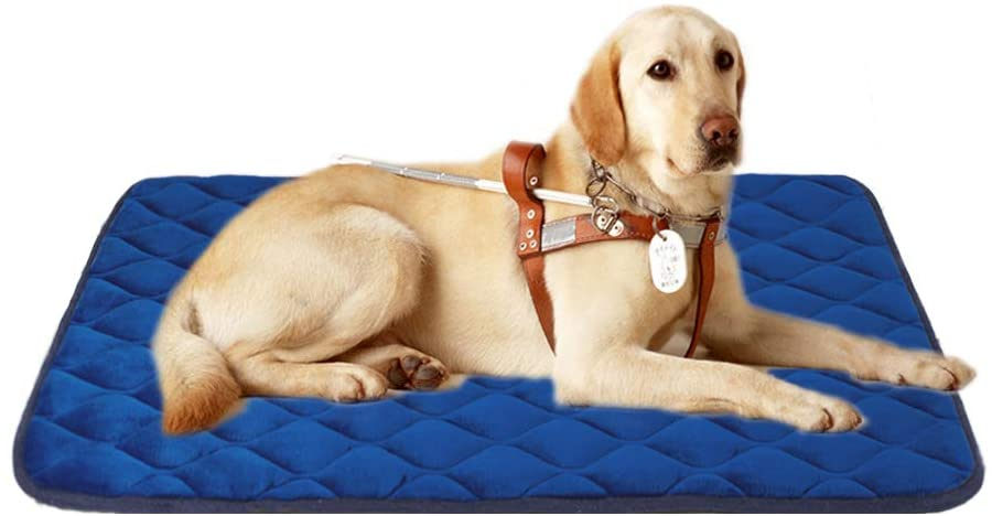 furrybaby Dog Bed Mat Soft Crate Mat with Anti-Slip Bottom Machine Washable Pet Mattress for Dog Sleeping