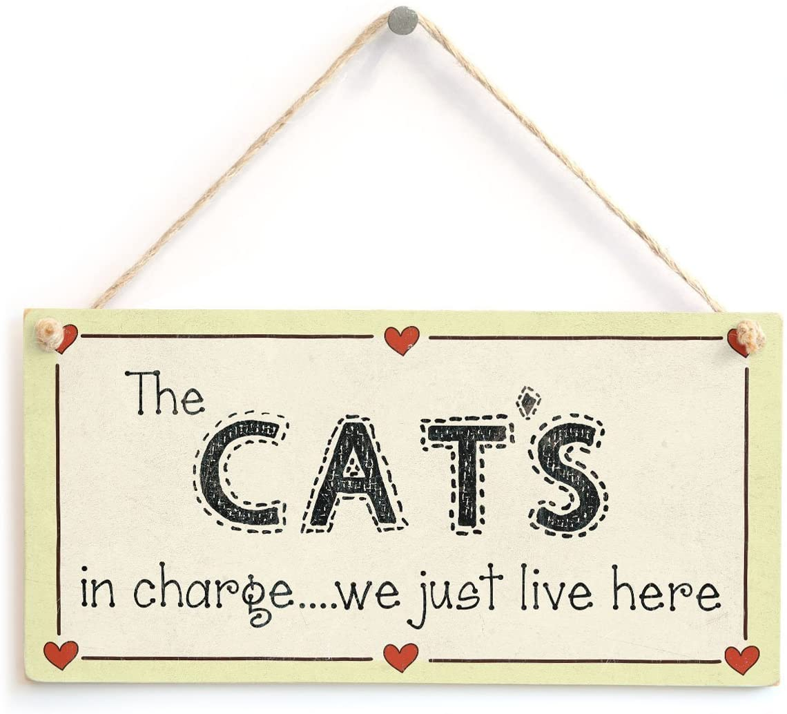 Meijiafei The Cat's in Charge we just Live here - Crazy Cat Lover Sign 10