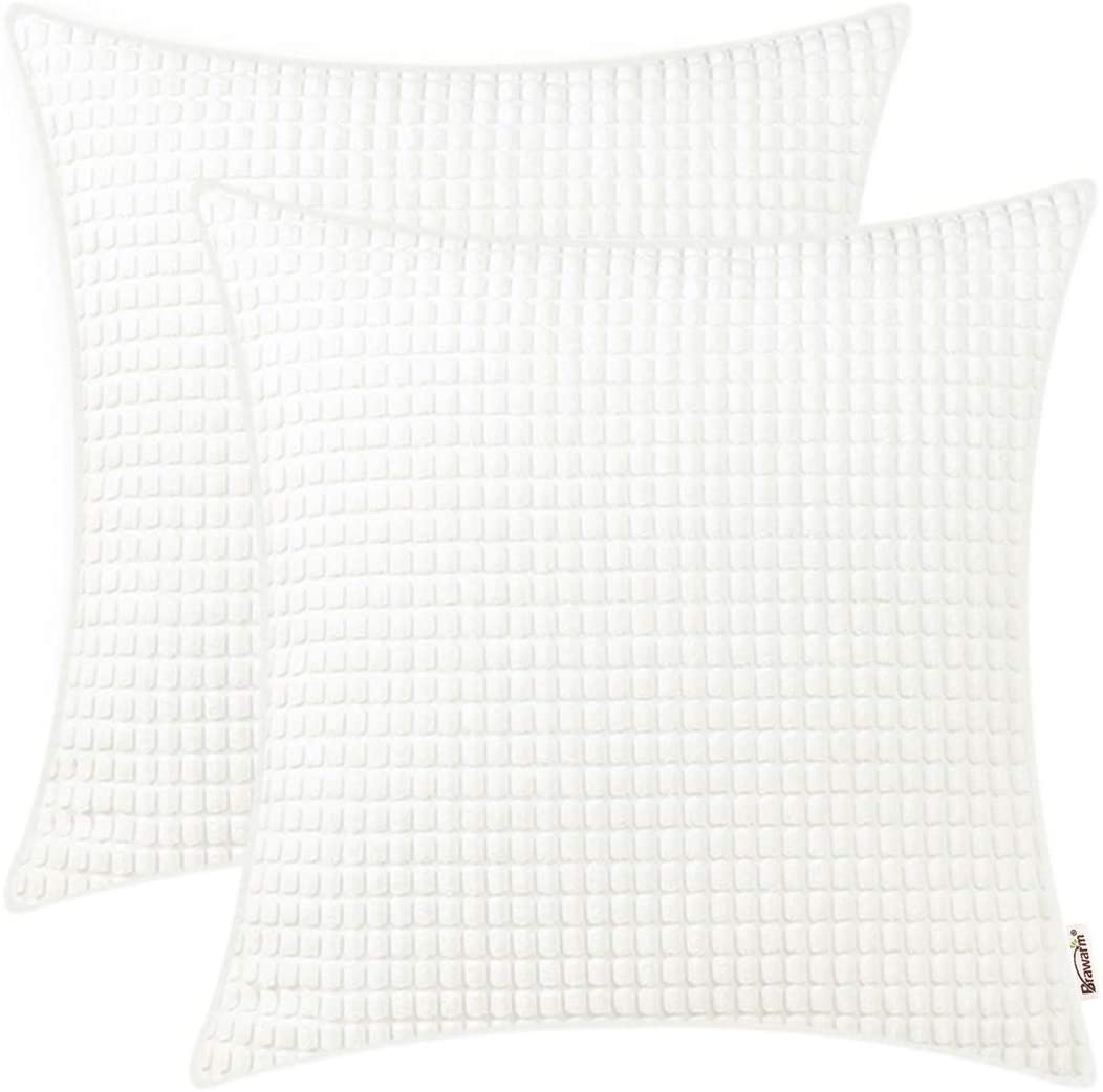 BRAWARM Pack of 2 Cozy Throw Pillow Covers Cases for Couch Sofa Home Decoration Supersoft Corduroy Corn Striped with Piping Both Sides 20 X 20 Inches True White