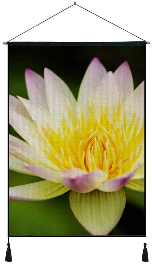 DZ.HAIKA Flower Lotus Yellow White Water Lily - Natural Scenery Art Print Cotton Linen Home Wall Decor Hanging Posters(18x26inch)