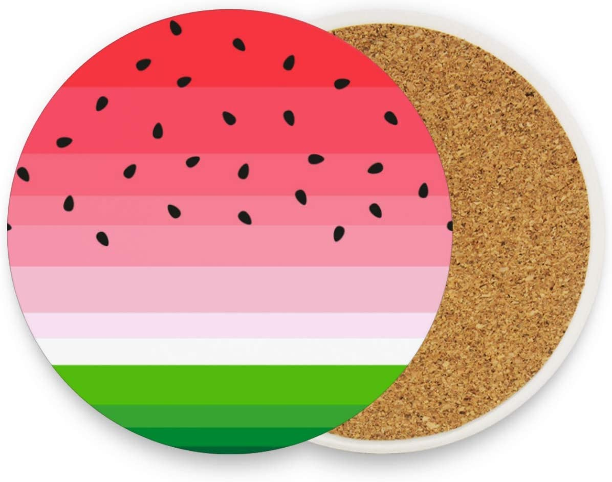 visesunny Watermelon Print Drink Coaster Moisture Absorbing Stone Coasters with Cork Base for Tabletop Protection Prevent Furniture Damage, 2 Pieces