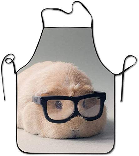 Cute Guinea Pig Aprons for Women and Men - Durable Comfortable Bib Apron Chef Kitchen Aprons for Cooking, Baking, Crafting, BBQ