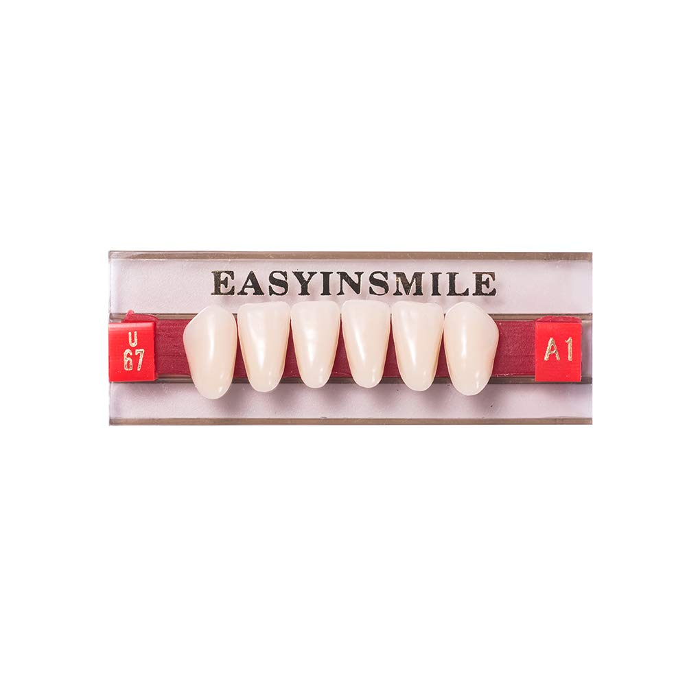 Easyinsmile Dental Synthetic Resin Teeth Acrylic Denture False Tooth for Adults Full Set/Anterior/Posterior (Lower Anterior Teeth U67, A1)