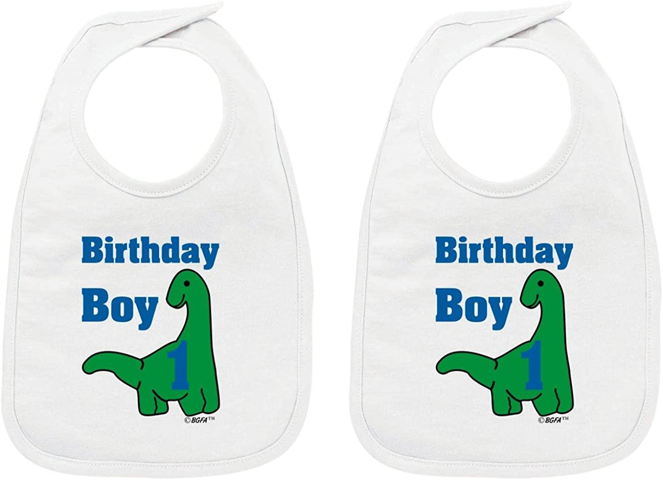 Baby Gifts For All 1st Birthday Gift Dinosaur Birthday Boy Baby Bib