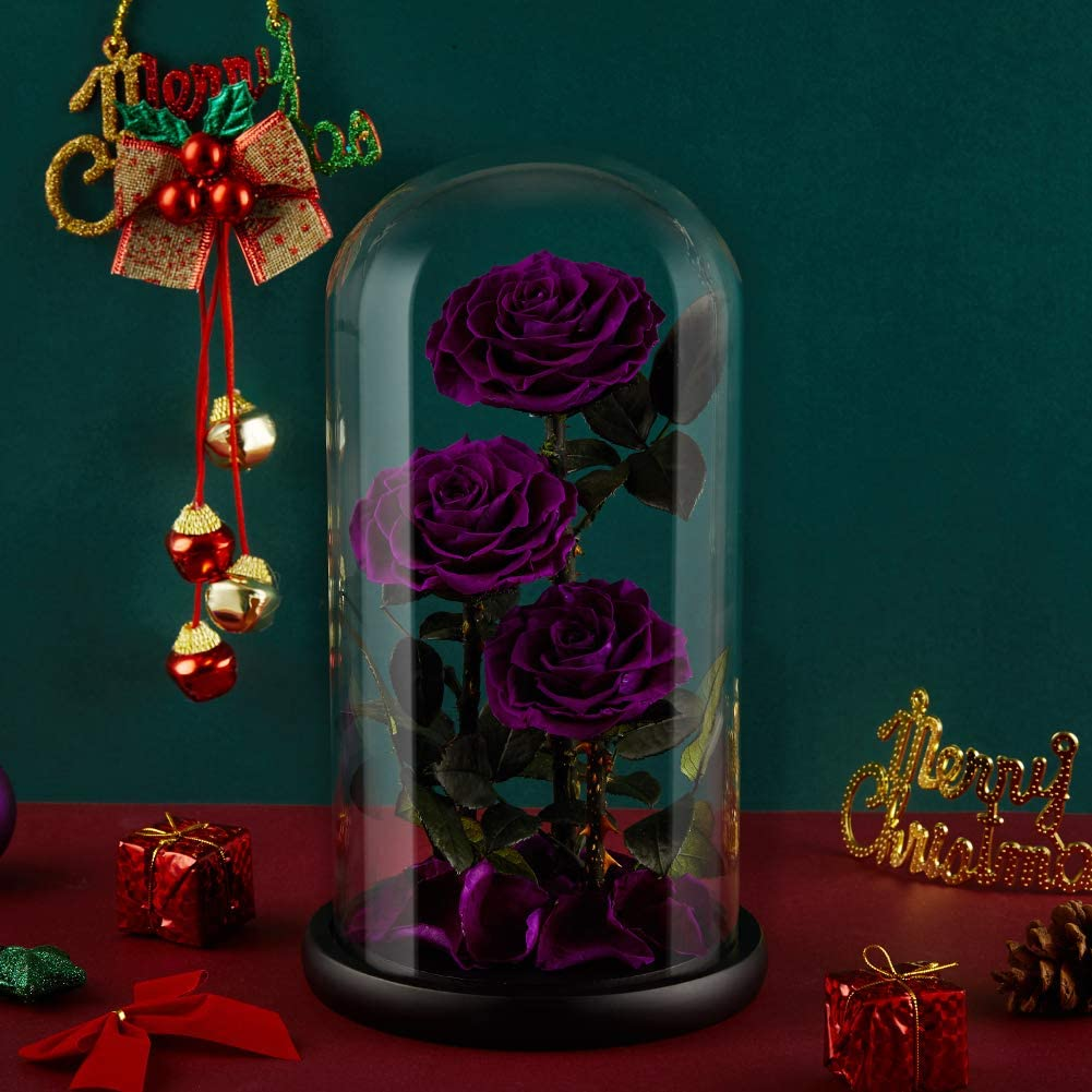 Eterfield Preserved Real Rose Handmade Eternal Rose in Glass Doom Gift for Her Valentine's Day Mother's Day Anniversary Birthday (Large, 3 Purple Roses)