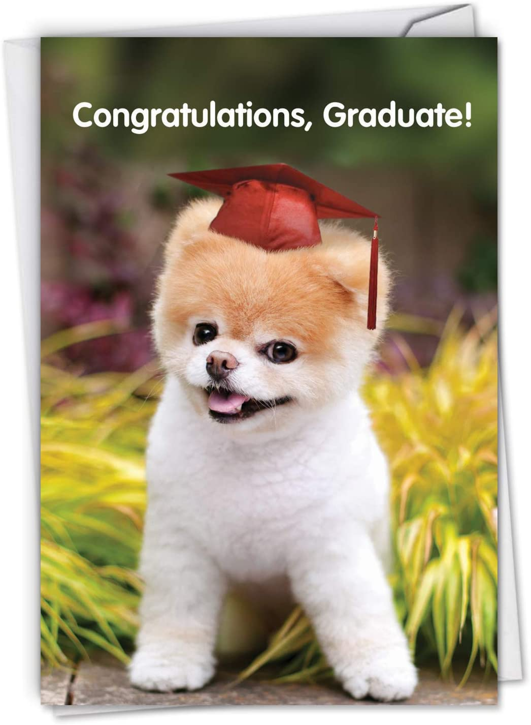 The Best Card Company - Graduation Greeting Card with Envelope - Congratulations Graduate Notecard, School, College - Boo-Tiful Future C6820GDG