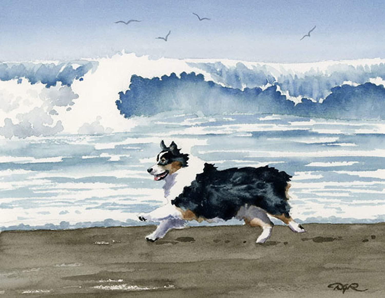 Australian Shepherd on The Beach Art Print by Watercolor Artist DJ Rogers/Oversized