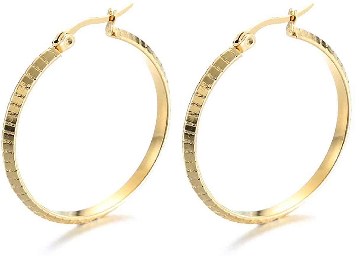 Stainless Steel Hoop Earrings for Women, Twist Hoop Earrings, Silver-tone, Gold-tone,Diamdter:10/20mm
