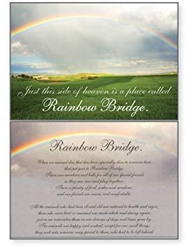 Dog Speak Rainbow Bridge - Thinking of You - Death Loss of Pet Sympathy Card