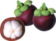 Organic Mangosteen Fruit Powder - 5 lb - Queen of Fruits Superfood Supplement - Natural Source of Antioxidants, Vitamins, & Minerals - Grown In Thailand - Vegan, Non GMO, Gluten Free