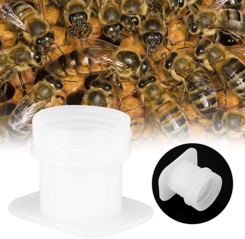 Bee Water Feeder, 10PCS Bee Water Feeder Bowl Drinker Drinking Fountain Waterer Beekeeping Equipment Tools for Spring or Summer Build Up