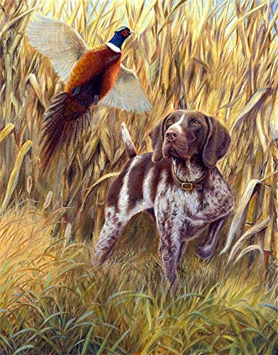Michael Steddum Steady to Wing A Limited Edition German Shorthaired Pointer Print