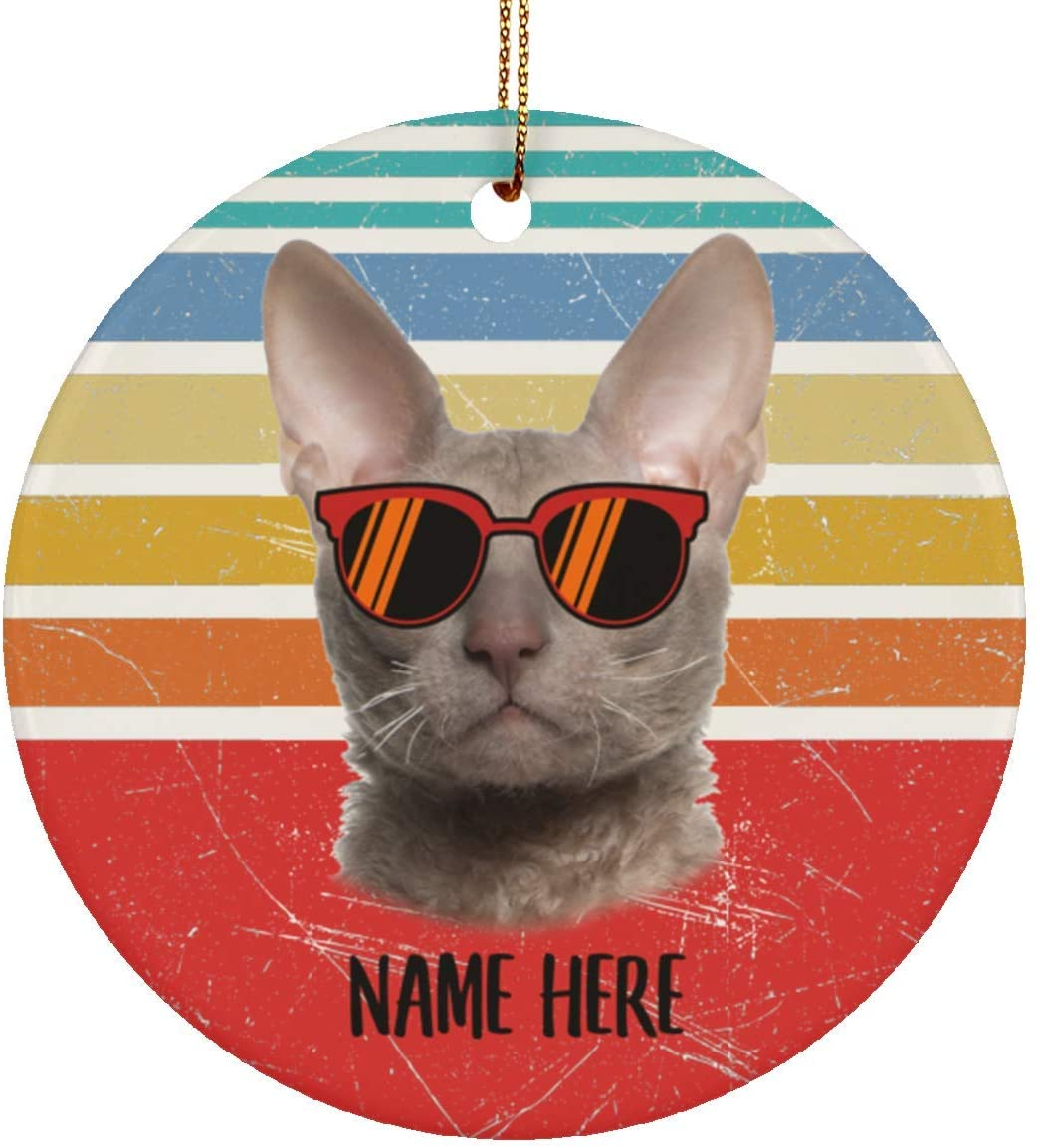 Lovesout Funny Cornish Rex Cat Brown Glasses Sunset Retro Personalized Name Christmas Tree Ceramic Circle Ornament