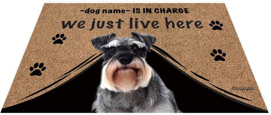 BAGEYOU Personalized Dog's Name Outdoor Doormat with My Love Dog Schnauzer Welcome Floor Mat Who is in Charge We Just Live Here 23.6