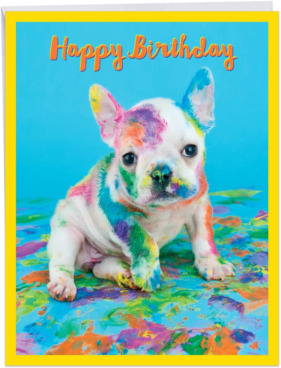 The Best Card Company Dirty Dogs - Birthday From Us Card with Envelope (Letterhead 8.5 x 11 Inch) - Messy Little Pup J7217ABDG-US
