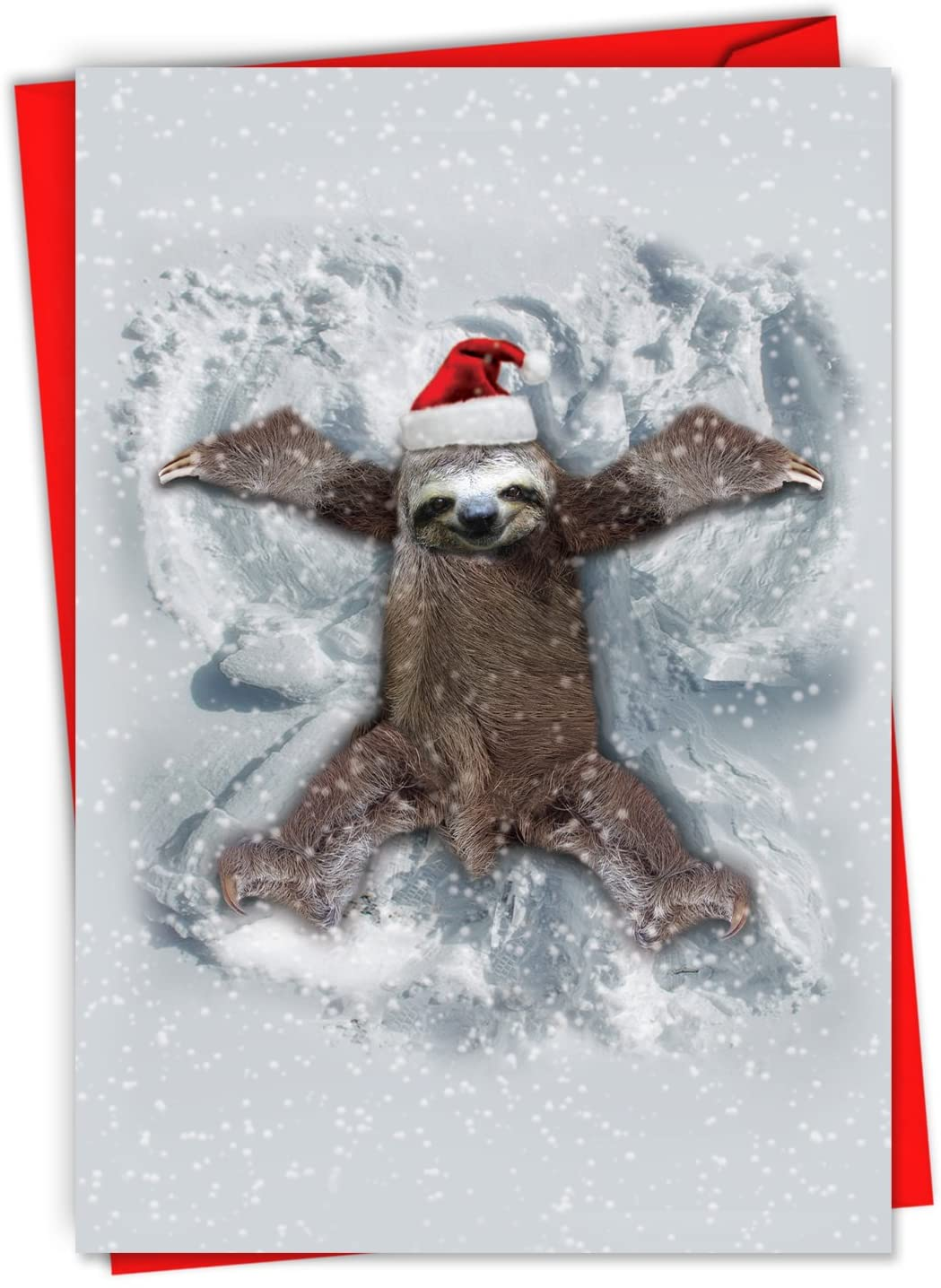 Sloth Angel Wings - 12 Boxed Christmas Note Cards with Envelopes (4.63 x 6.75 Inch) - Zoo Animal Greeting Card for Kids, Parents - Xmas Season's Greetings for the Yuletide Season C6214XSG-B12x1