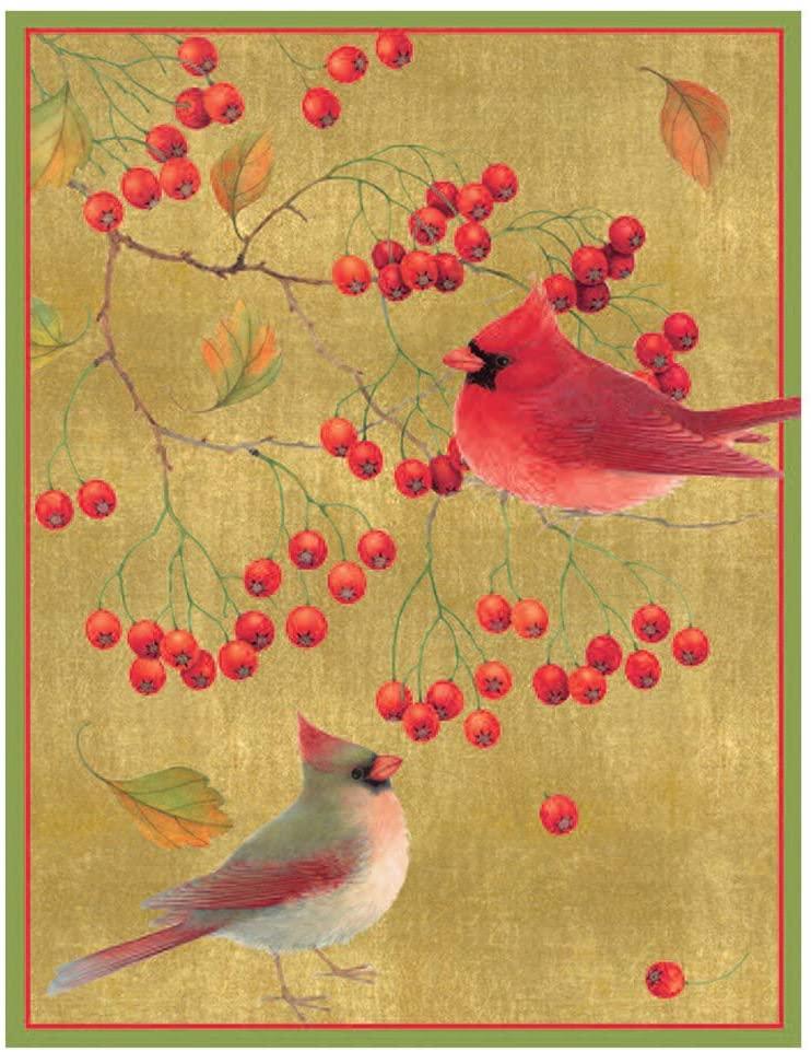 Caspari Cardinals Boxed Christmas Cards - 16 Cards & Envelopes