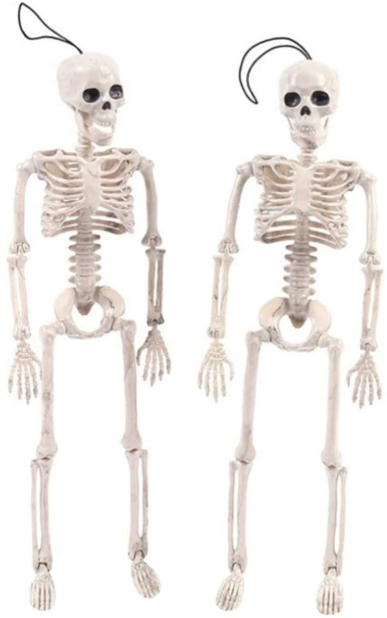 ARTIBETTER 2 Pcs Life Size Skeleton Model Posable Halloween Skeleton with Movable Joints Halloween Haunted House Supplies