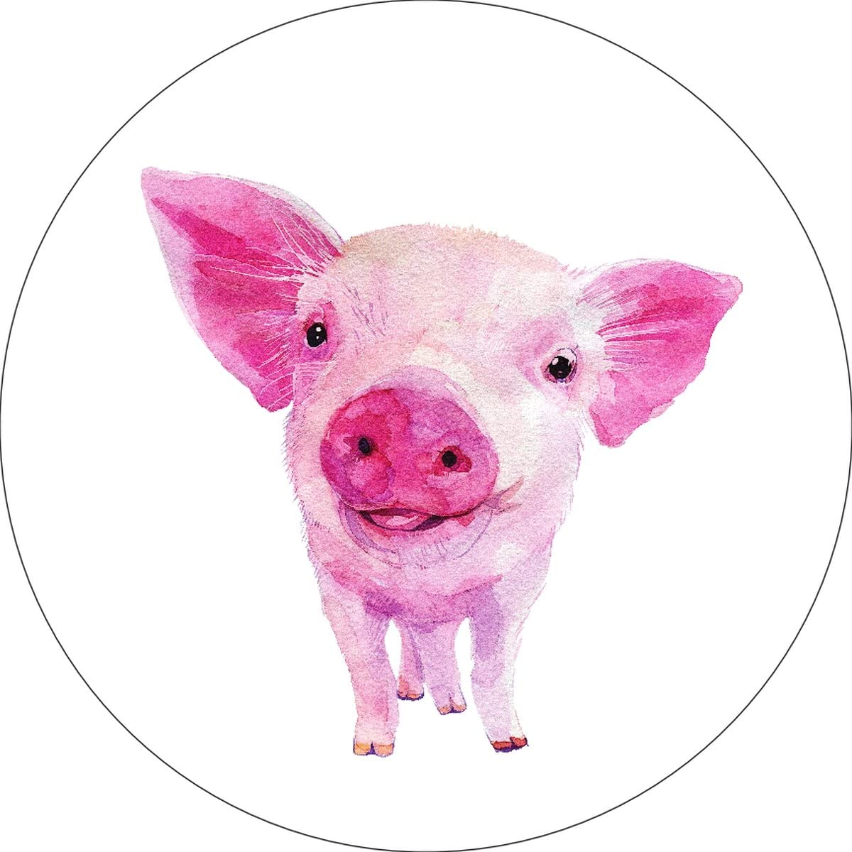 iCandy Products Inc Pig Home Wall Shelf Decor Animal Decorations Watercolor Circle Sign - 9 Inch, Plastic