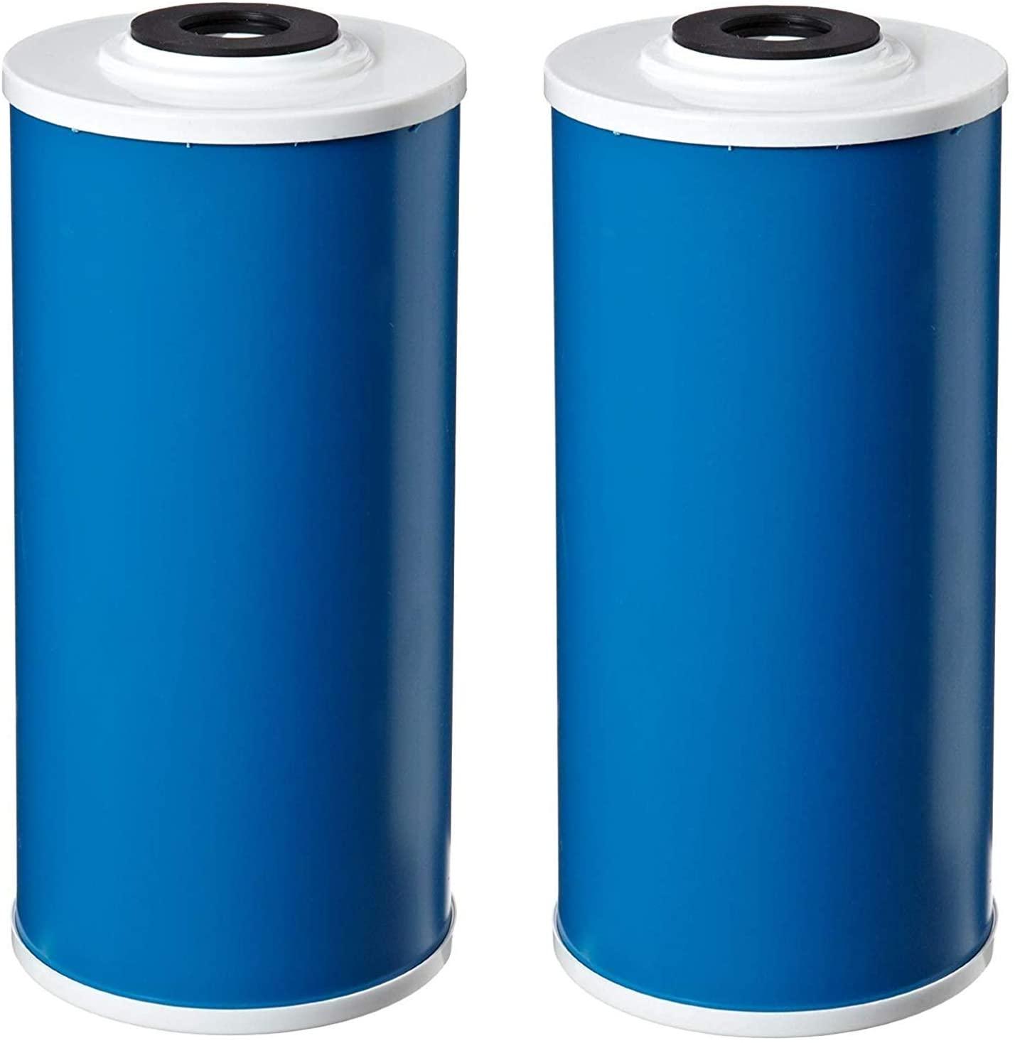 Pentek GAC-BB Drinking Water Filter (9-3/4 x 4-1/2) (Pack of 2)
