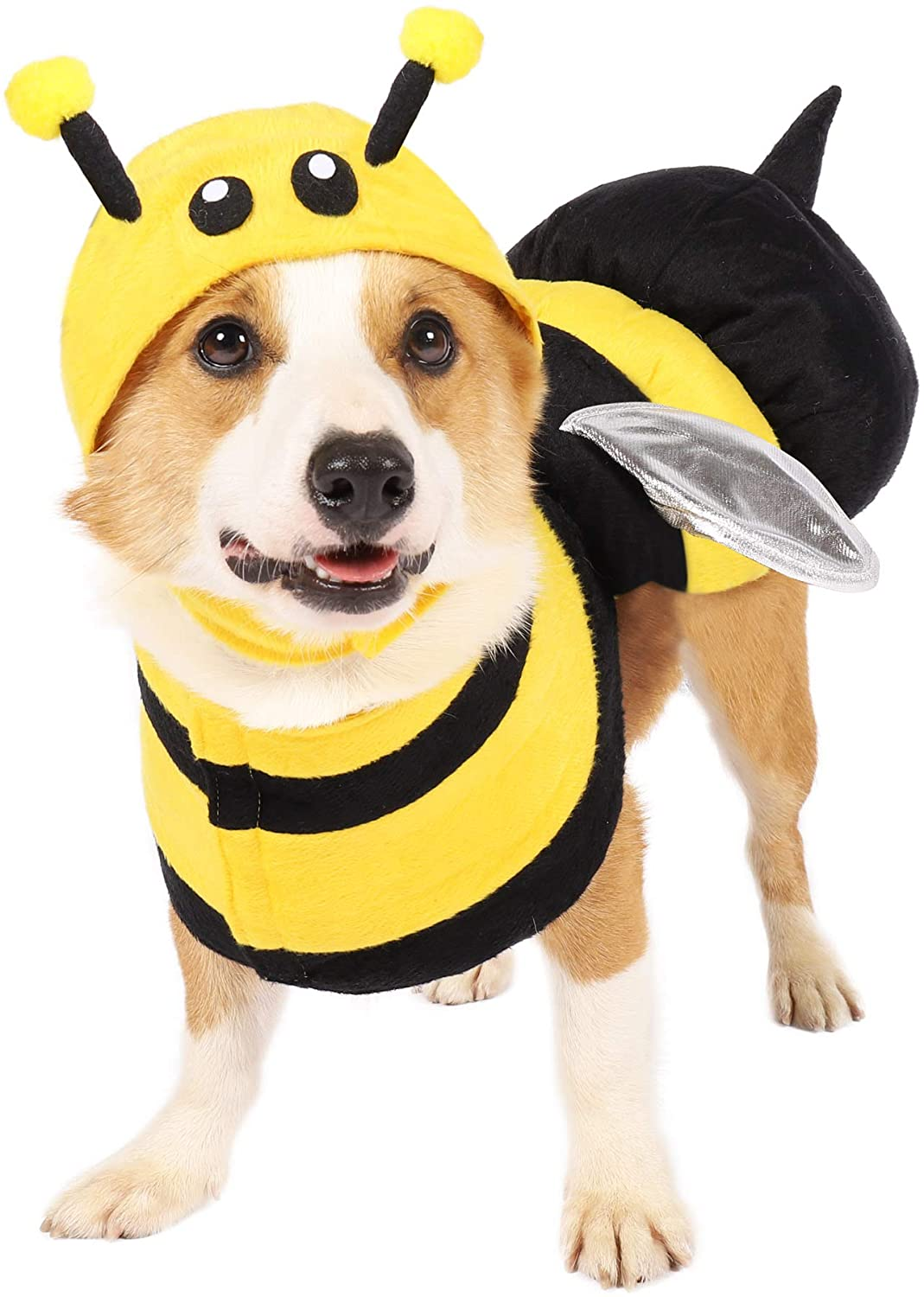 Spooktacular Creations Halloween Bee Dog Pet Costume for Halloween Dress-up Party, Role Play, Carnival Cosplay, Holiday Decorations Clothes