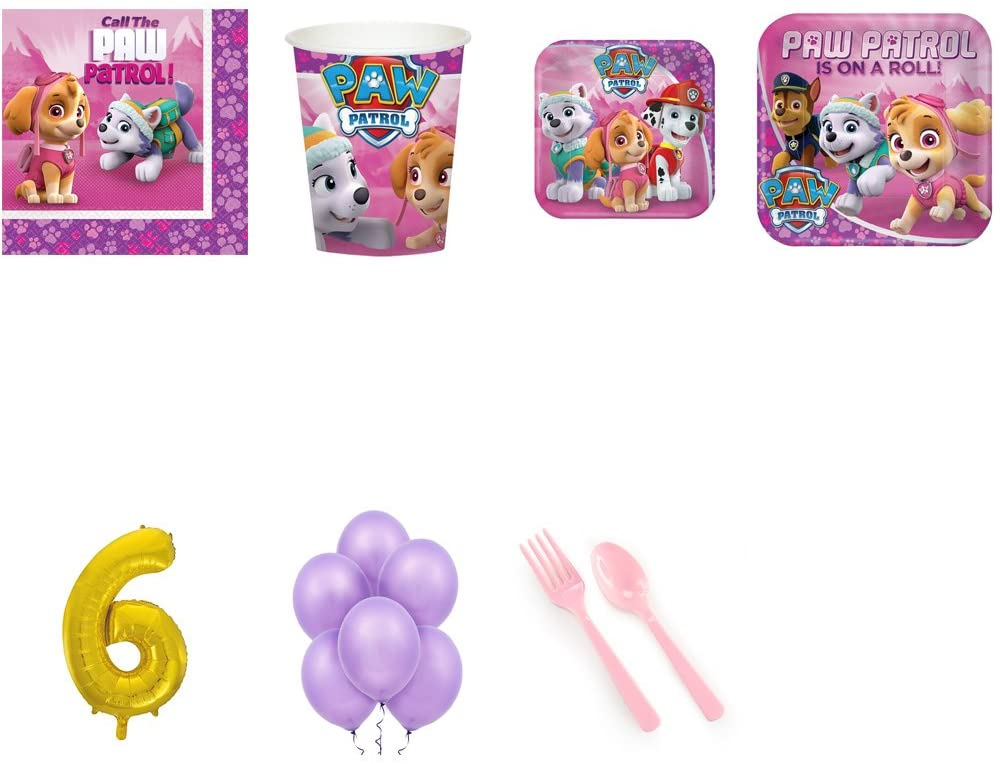Paw Patrol Pink 6th Birthday Supplies Party Pack for 16