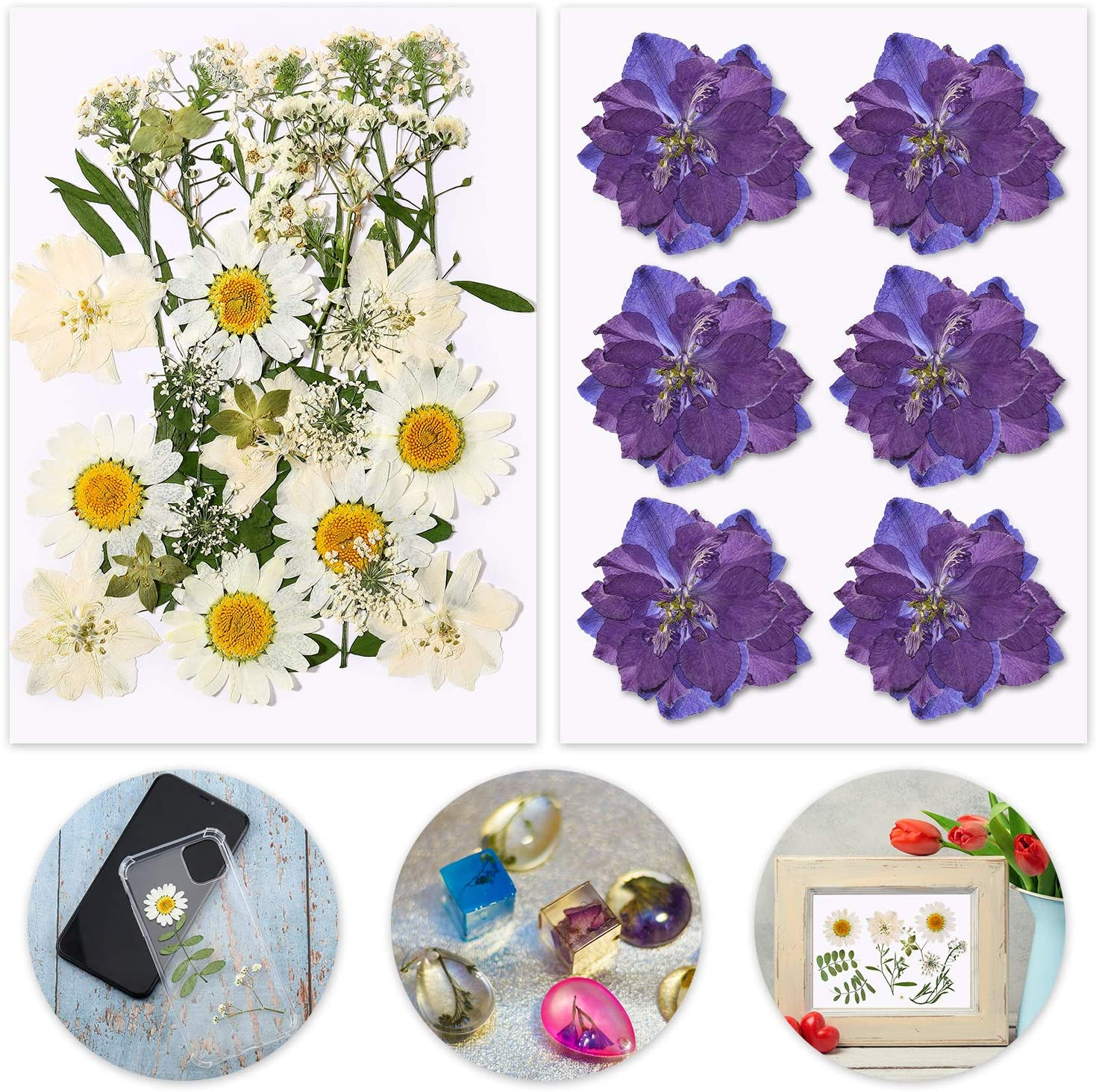 BBTO 2 Sets Real Dried Pressed Flowers Leaves Petals for DIY Crafts, Natural Colorful Pressed Daisy Flowers for DIY Candle Resin Jewelry Nail Decor Art Floral Making Accessories