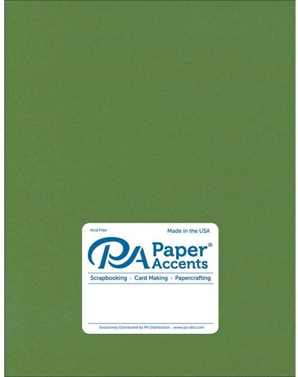 Paper Accents Cardstock 65 lb Parrot Stash Builder, 8.5