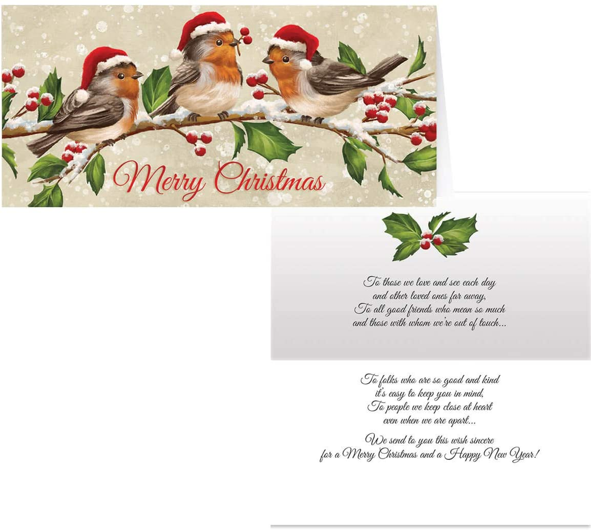 Birds with Hats Christmas Card Set of 20