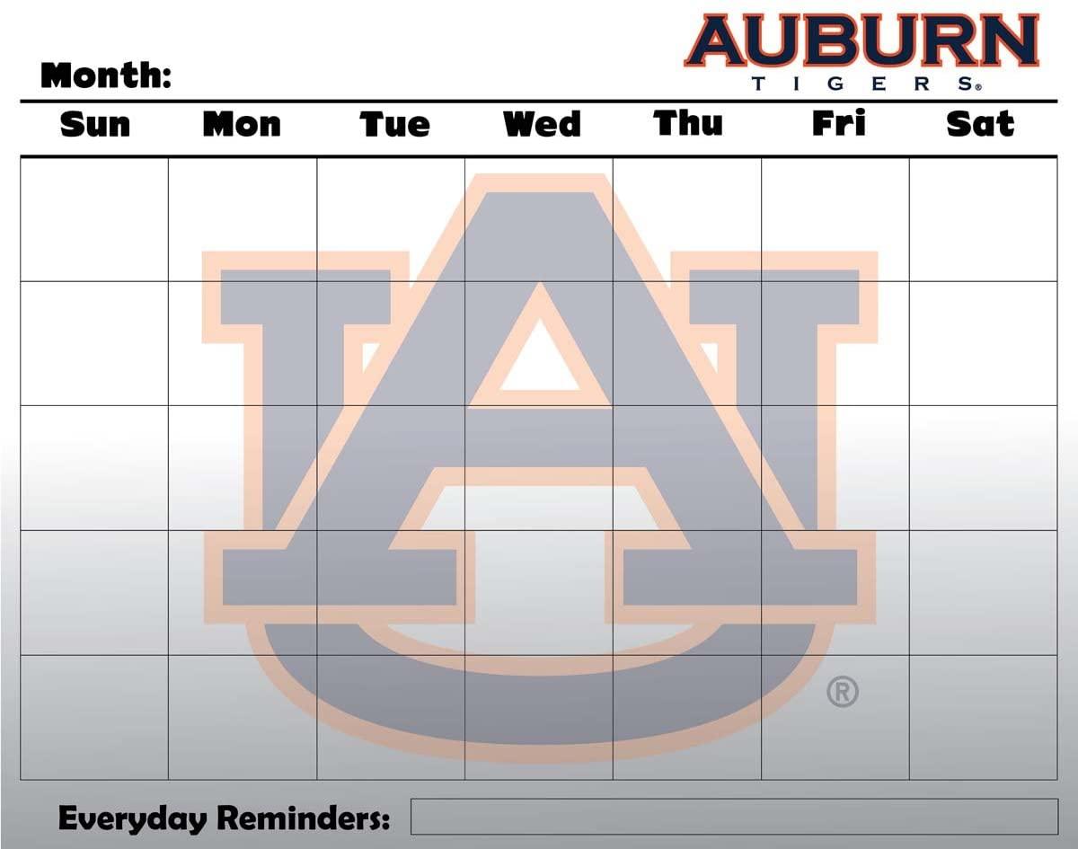 Auburn University 16