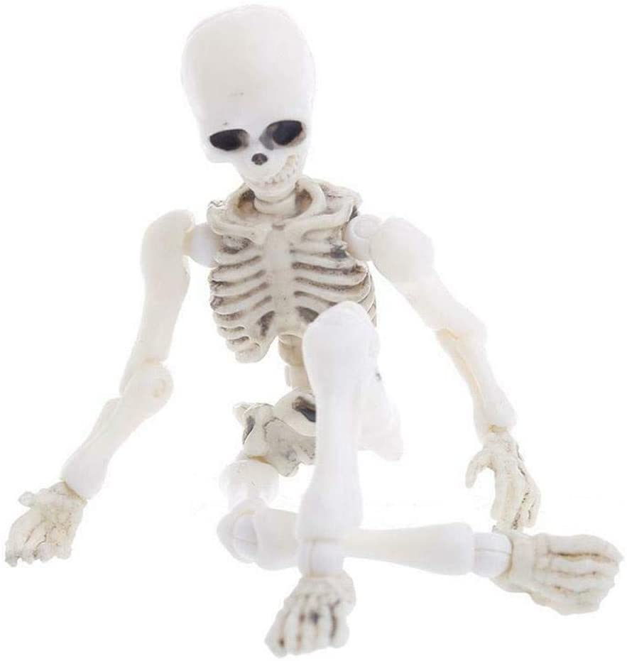 IKevan_ Halloween Simulation Human Skeleton, Creepy Posture Movable Skeleton Human Model Skull Full Body Mini Figure Toy for Party & Halloween Decoration