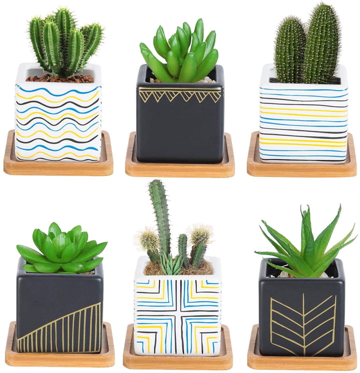 Homiea Set of 6 Mini Succulent Planters - Tiny Succulent Pots for Home - Mini Planter and Cute Plant Pots for Succulents - Small Plant Containers for Succulents, Cactus, and Flowers