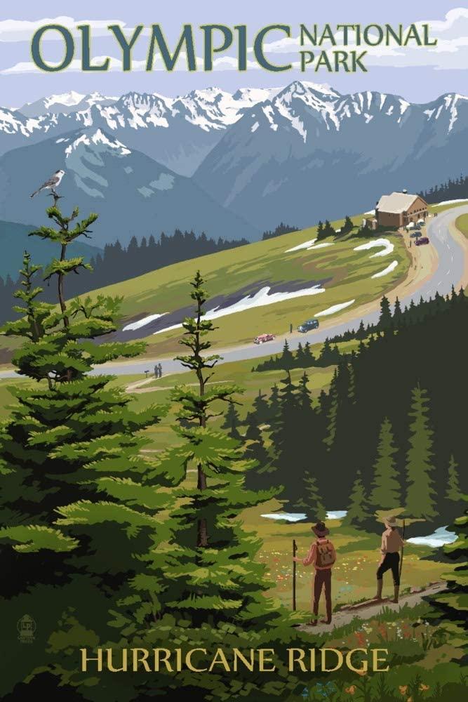 Olympic National Park, Washington - Hurricane Ridge and Hikers Illustration (9x12 Art Print, Wall Decor Travel Poster)