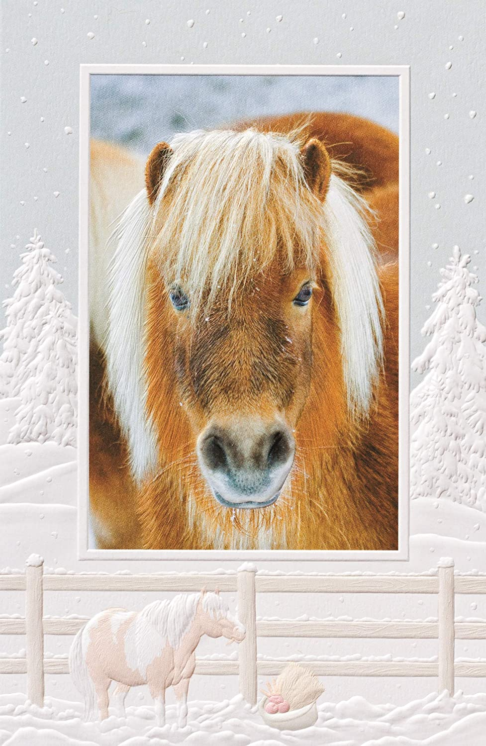 Pumpernickel Press Pack of 16 Christmas Pony Fine Art Embossed Christmas Greeting Cards