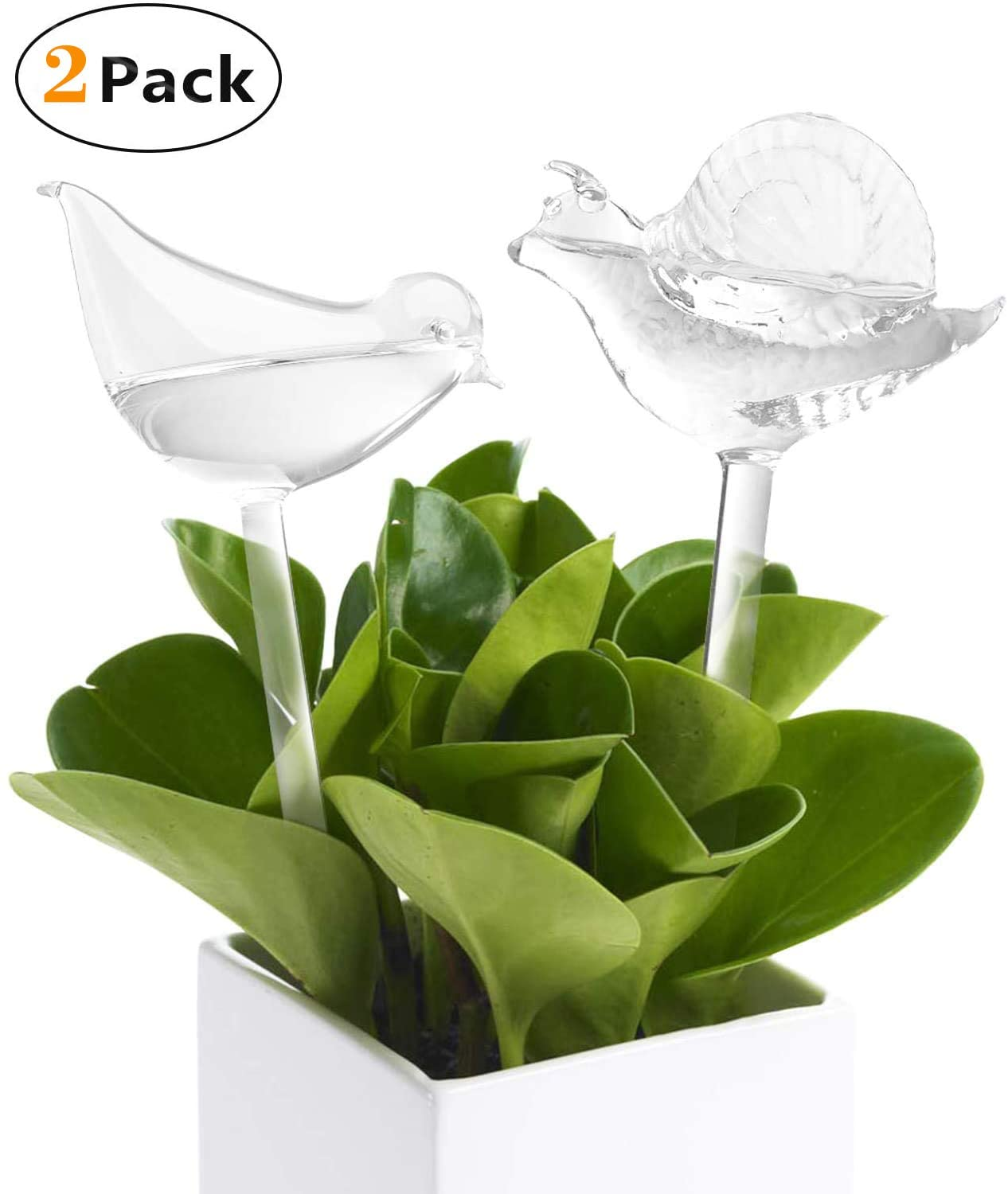 2 Pack Plant Waterer Bulbs Self Watering Globes Automatic Watering Stakes Bird Shape Design Hand Blown Clear Glass Plant Water Drippers Irrigation Devices for Indoor and Outdoor Plants (Bird & Snail)