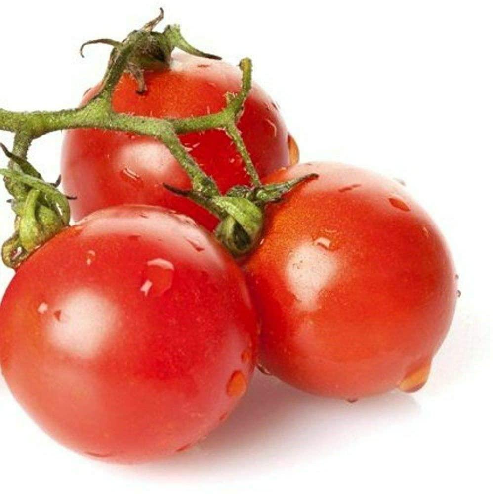 Toyensnow - Large Red Cherry Tomato Seeds (40K Seeds or 1/4 Pound)
