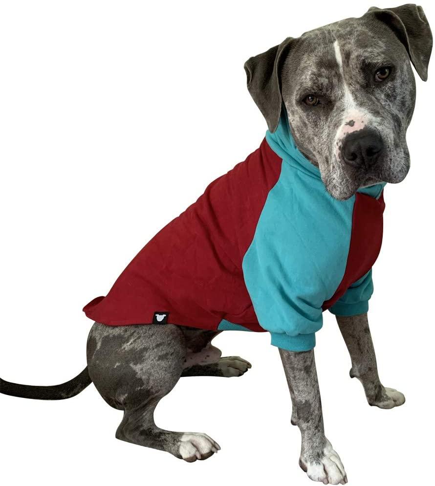 Tooth & Honey Large Dog Sweater/Pitbull/Large Dog Sweater Dog Sweatshirt/Red & Teal
