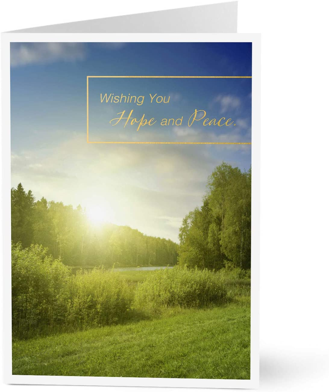 Hallmark Business Thinking of You Appreciation Cards for Employees (Hope and Peace Sunrise) (Pack of 25 Greeting Cards)