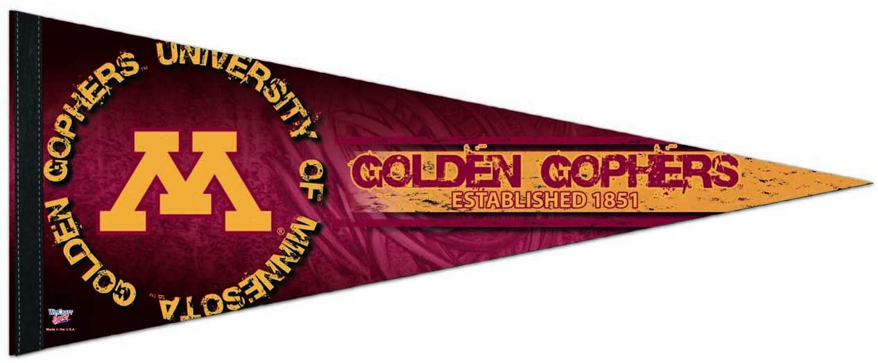 WinCraft Minnesota Golden Gophers NCAA 12X30 Premium Pennant - Team Color,