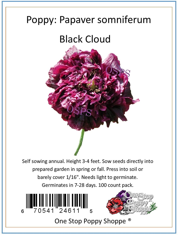 100 Poppy Flower Seeds Black Cloud Papaver Somniferum.One Stop Poppy Shoppe Brand.