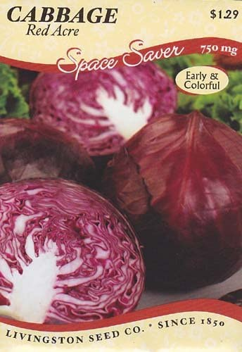 Red Acre Cabbage Seeds - 750 mg - GARDEN FRESH PACK!