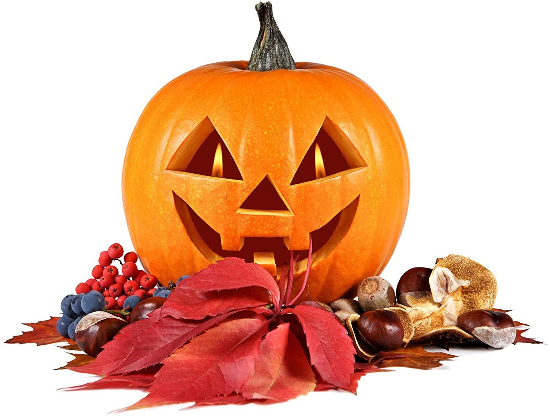 NatureZ Edge Pumpkin Seeds, Jack O'Lantern, Heirloom Seeds for Planting, Garden Seeds for Planting, Pumpkin Seeds for Planting