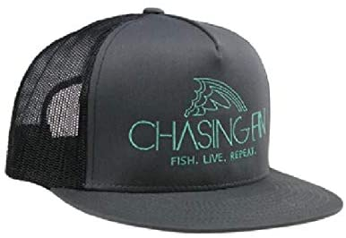 Chasing Fin Hats
