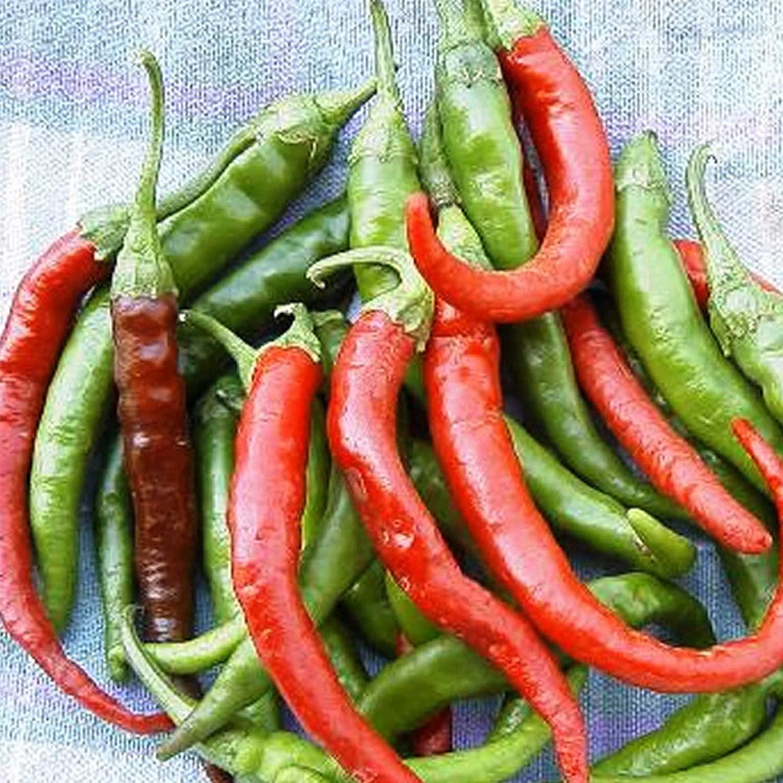 Long Slim Cayenne Hot Pepper Garden Seeds - 4 Oz - Non-GMO, Heirloom Vegetable Gardening Seeds