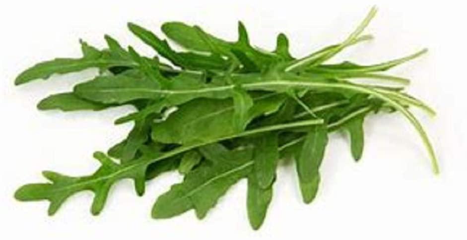 Arugula Roquette Greens, Heirloom, 100 Seeds, Crisp